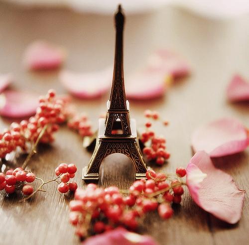 cute-love-paris-photography-rose-Favim_com-98494A